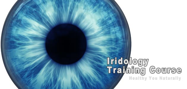 Iridology Practitioner Course II