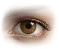 Sclerology - Sclera Assessment (Eyes)